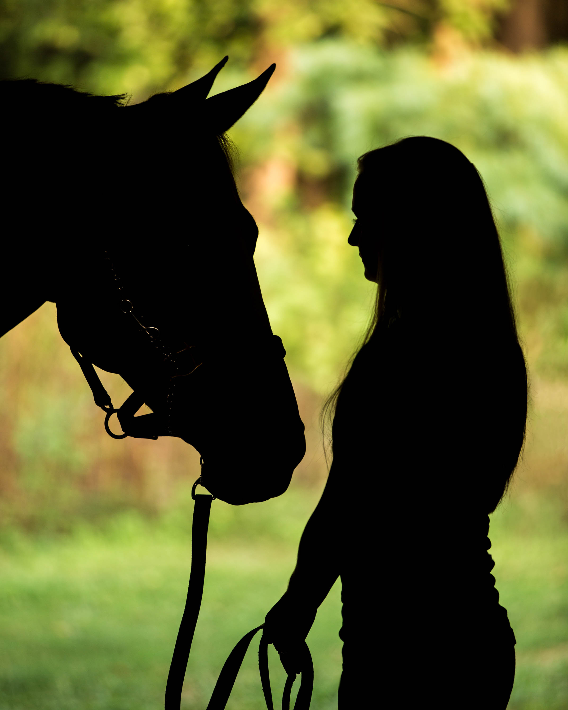 High School Senior Horse Silhouette
