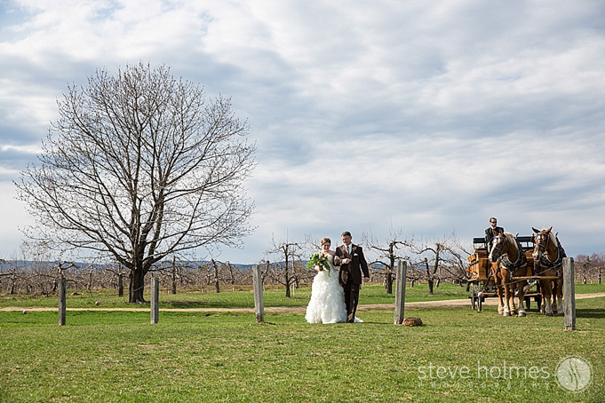 The bride and her father arrive at the ceremony with the apple orchard in the background.