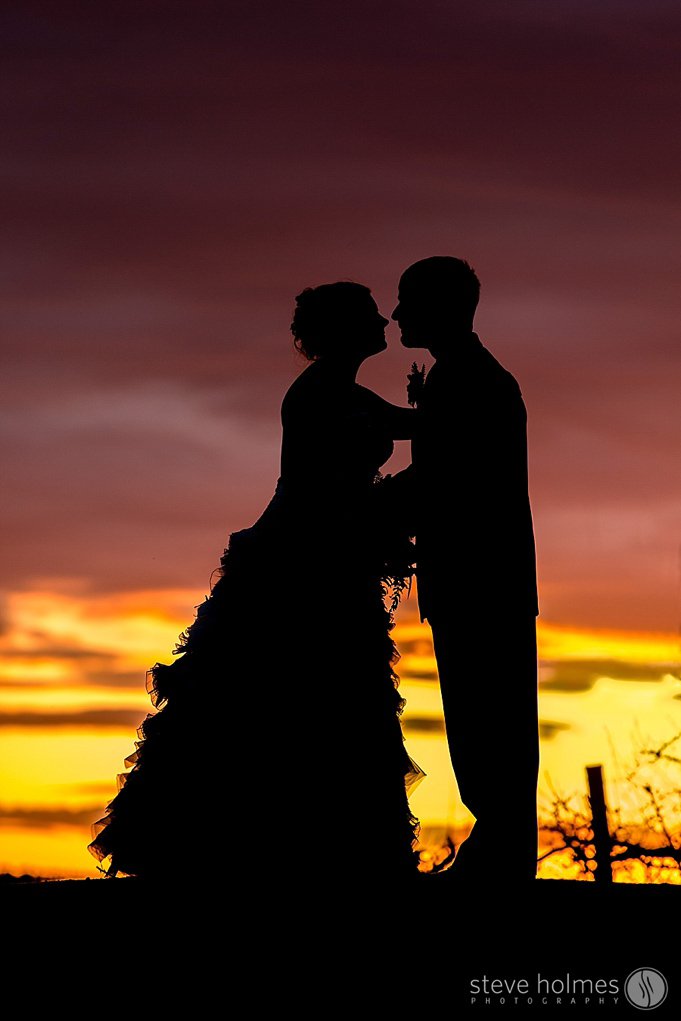 A stunning sunset silhouette at Alyson's Orchard.