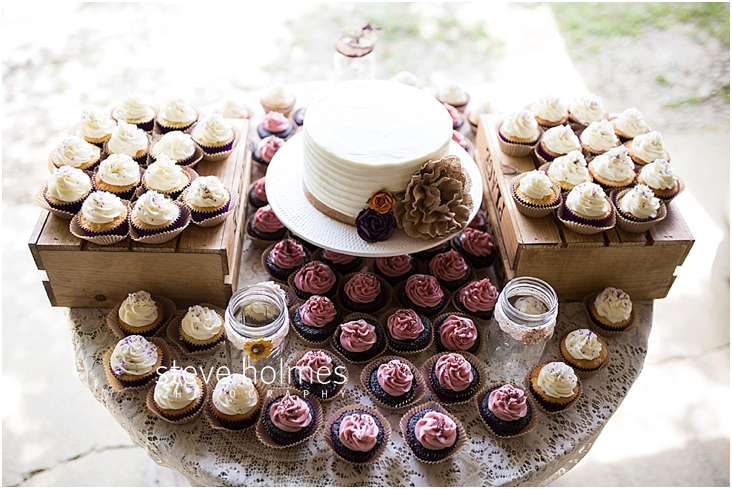 24_wedding-cake-and-cupcakes