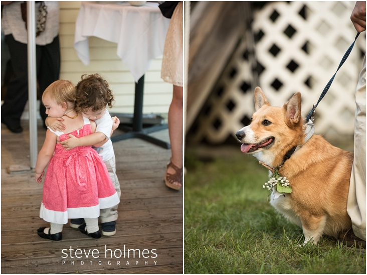 pet-dog-at-wedding