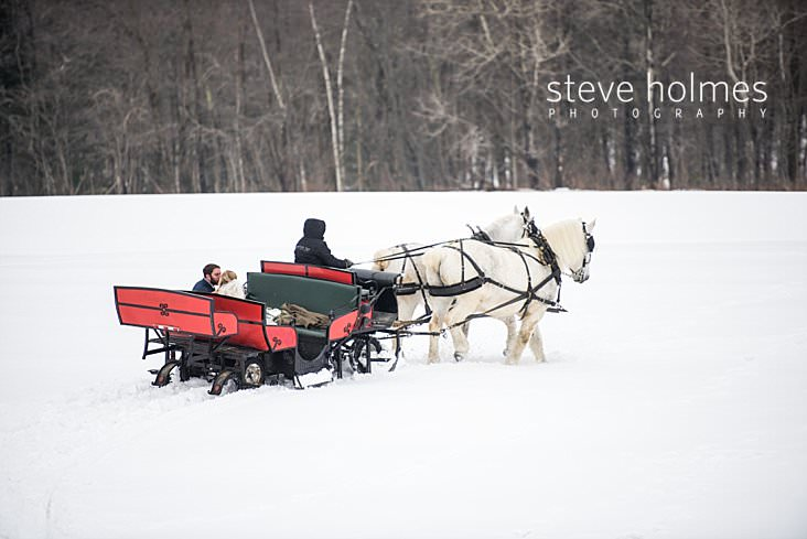 33_Bride and groom kiss in sleigh pulled by two white horses.jpg