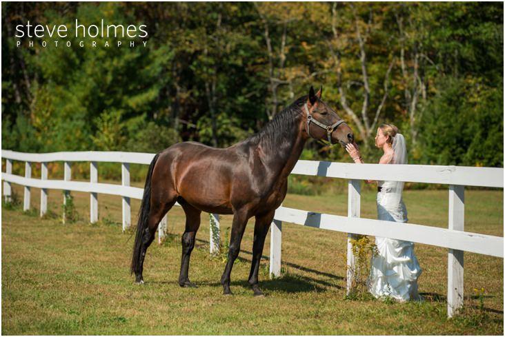 12_bride-pets-horse