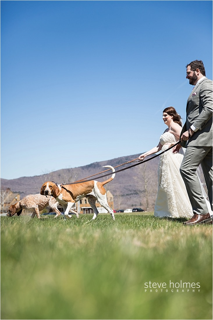 Bride and Groom walk their dogs in field