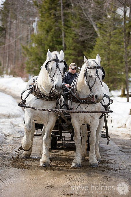The bride arrived to her ceremony in style by horse drawn carriage at The Mountain Top Inn & Resort.